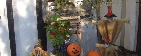 Montag der 31.10.-Halloween in der Scheune