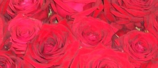 Cuisine d'Amour – Valentinstag in der Scheune