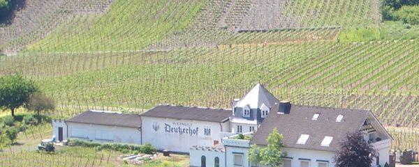 Scheune on Tour: Kulinarische Jahrgangsprobe im Deutzerhof